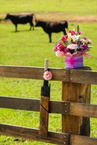 Gone too soon. Phillip Hughes shared his love for cricket with a love for cattle.
